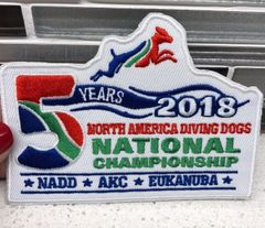 2018 Nationals Patch