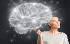 Brain-Based Coaching (5 Hour Package)
