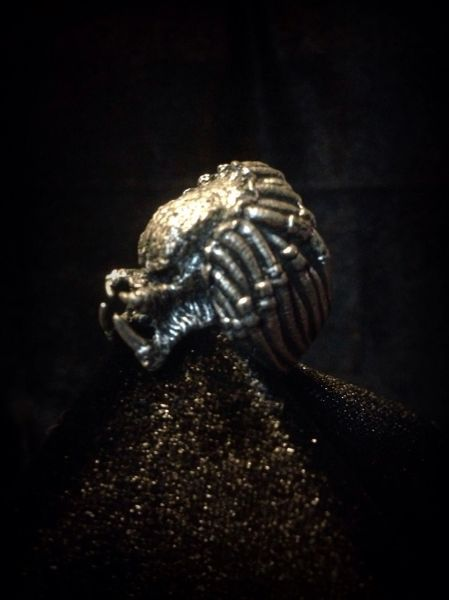 Predator, Ring