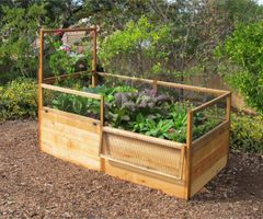 Maine Kitchen Garden - Single Trellis for 3'x6'