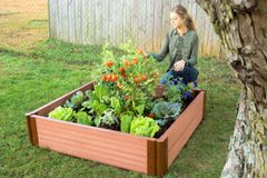 "Frame It All Composite Raised Bed - 4'x4'x11"" - 2inch profile"