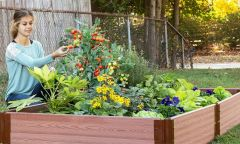 """Frame It All Raised Garden Bed 4' x 8' x 11"""" – 1"""" profile - Classic Sienna"""