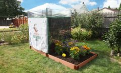Pro Butterfly Pollinator - 4ft. X 8ft. Rectangle (1 Inch Profile)