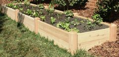 "2'x12' - 11"" high Cedar Raised Garden Bed by Marleywood"
