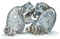 12 Printed Place Cards - Raccoon Pair