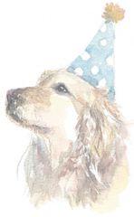 10 Printed Birthday Dog Wine Tags
