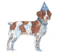 Pet Portraits as Birthday Cards