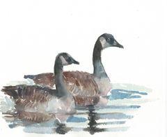 Original Watercolor - Swimming Geese