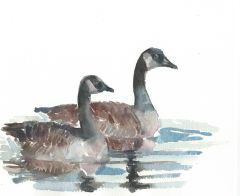 12 Printed Place Cards - Two Geese 1