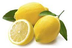 66 Lemon Slices Large Gel