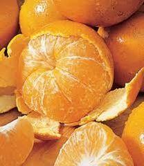 44 Tangerine Small Spray