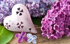 42 Lilac Large Scented Gel
