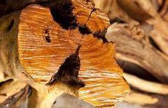 53 Sandalwood Incense Sticks