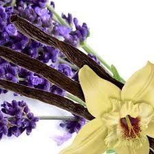56 Lavender Vanilla Medium Gel