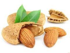 98 Almond Incense Cone