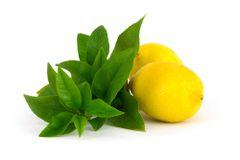 121 Verbena & Lemon Medium Gel