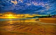 12 Seashore Medium Gel