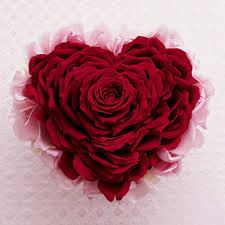 5 Rose Petal Large Gel