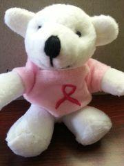 Breast Cancer Awareness Mini Bear