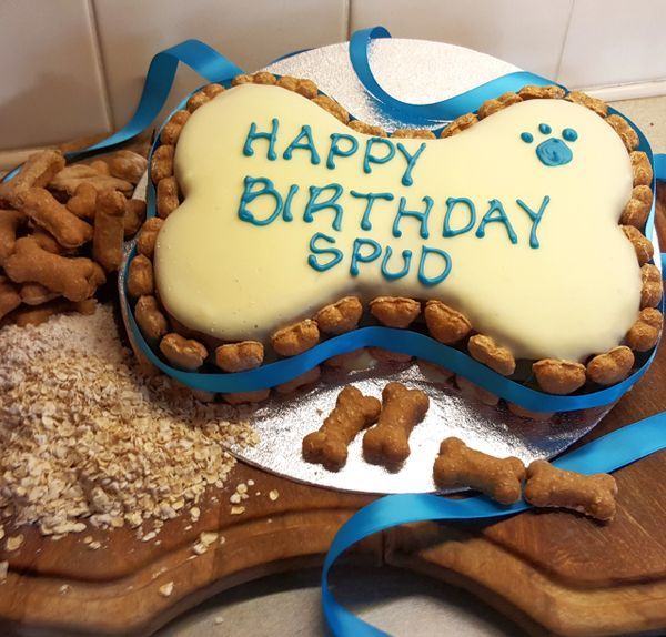 Dog Birthday Cake Large Bone Shape The Art Of Quality Pet