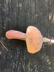 Jack'o'Lantern Wood Mushroom Ornament