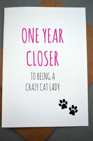 ONE YEAR CLOSER TO BEING A CRAZY CAT LADY