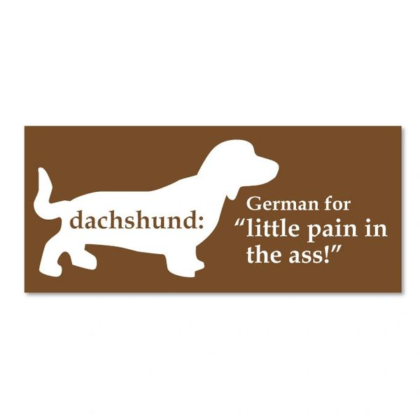"Dachshund: German for ""little pain in the ass"" Magnet"