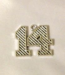 1290. Large Number 14 Pendant