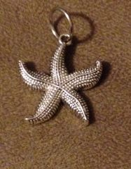 888. Large Starfish Pendant