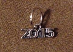 810. 2015 Pendant