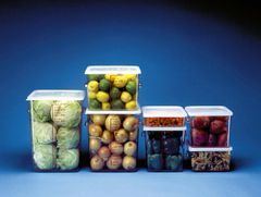 Space Saving Container 17L