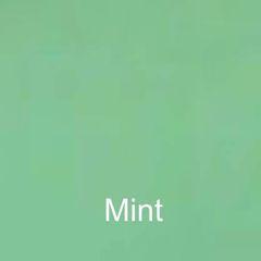 Mint DuraGloss Intermediate Adhesive Vinyl
