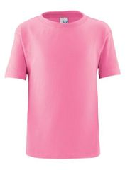 Toddler T Shirt - Raspberry
