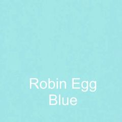 Robin Egg Blue DURA Wall Removable Wall Vinyl