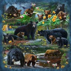 Signature Select Black Bear Forest Queen Blanket