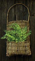 Vine Pocket Basket