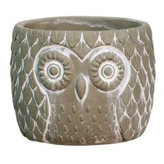 Cement Owl Planter
