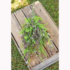 Eucalyptus Lavender Berry Bush