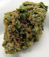 Afghan Kush For Sale : Afghan Kush Marijuana Grade A+ (Sativa)