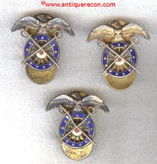 WW II US ARMY QUARTERMASTER COPRS OFFICER LAPEL INSIGNIA