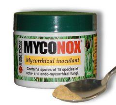 MYCONOX by HO YOKU