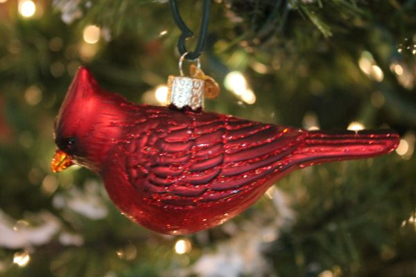 northern cardinal glass ornament - Red Cardinal Christmas Decorations