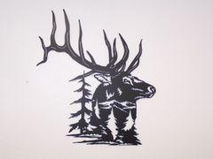 Elk With Pine