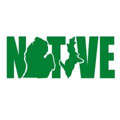Native Michigan Decal - Native Decal - Michigan Native - Native