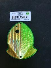 Medium Leo Flasher 50/50 Gold SS Crush on Chart