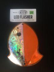 Medium Leo Flasher Silver Frost on Orange