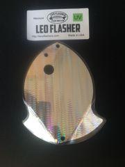 Medium Leo Flasher Silver Snake Skin