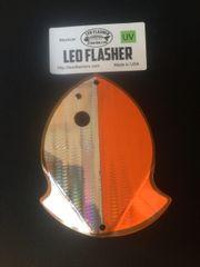Medium Leo Flasher Silver Snake Skin on Orange