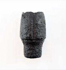 Nose Section of a Hotchkiss Artillery Shell