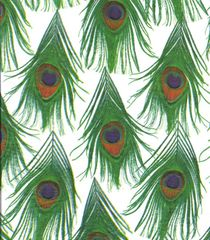 Peacock Feathers Gift Tissue Paper - 240 Sheets